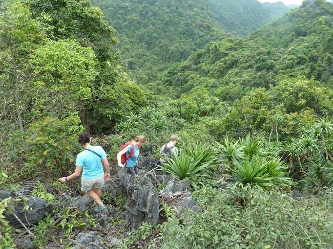 Top 5 most Beautiful Islands in Vietnam 2
