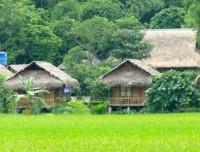 Pom Coong village Homestay