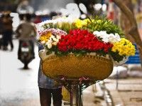 Vietnam Travel Blogs & News