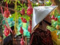 Vietnam Special Tours