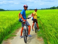 Mekong Delta Cycling Tour
