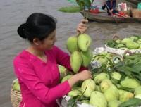 Mekong Delta Adventure - Boat Trip & Horse Cart Riding