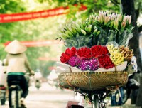 Hanoi - Halong Bay Tour