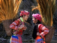 Highlights of Sapa