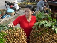 Mekong Delta Tour - 7 Days / 6 Nights