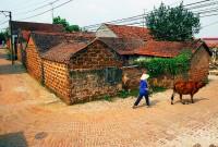 Day 6: Hanoi - Duong Lam village - Hanoi (B,L)