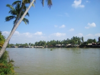 Day 7: Khong Island (B,L)
