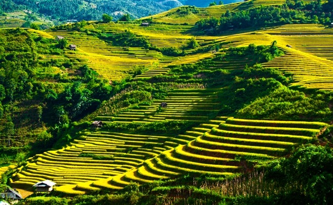 photography tour in vietnam