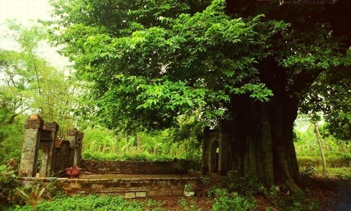 phuoc tich ancient village 5