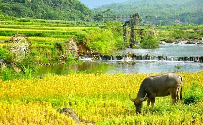 Pu Luong Retreat 12