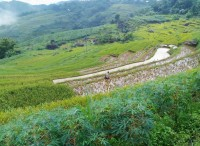 Pu Luong Trekking in 3 Days  - Stay at Pu Luong Retreat