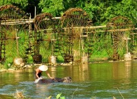 Pu Luong Nature Reserve – The Beauty Combination of Northern Vietnam