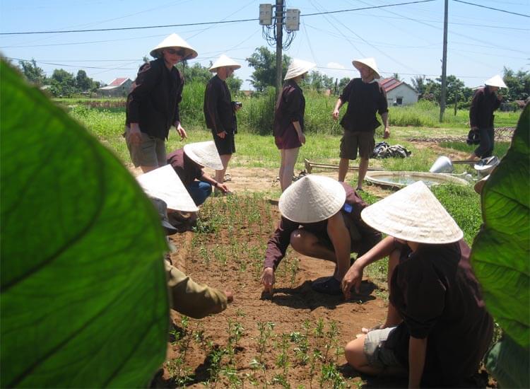 Thuy Bieu Eco Village 7