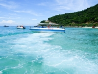 Day 7: Hoian – Cham Island (B/L)