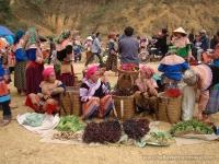 Day 5: Full day Enjoy a Tribal Traditional Market (B/L)