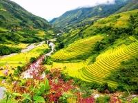 Day 4: Sapa - Y Linh Ho - Lao Chai - Ta Van - Sapa (B,L)