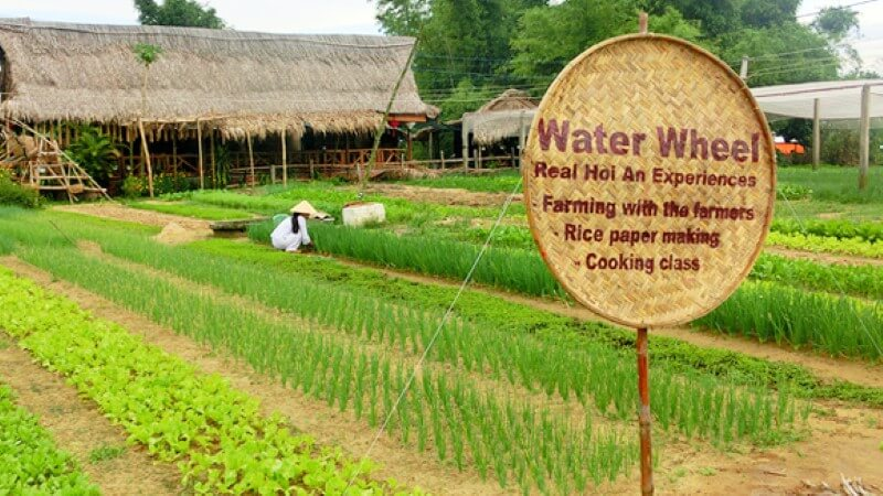 Tra Que Organic Village 2