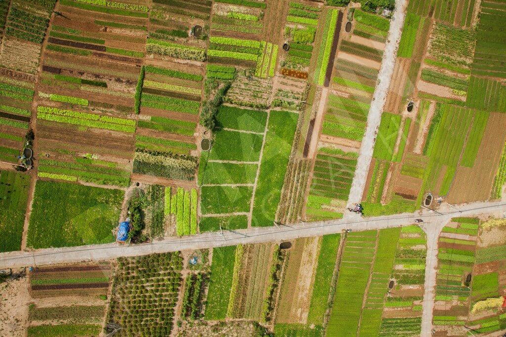 Tra Que Organic Village 1