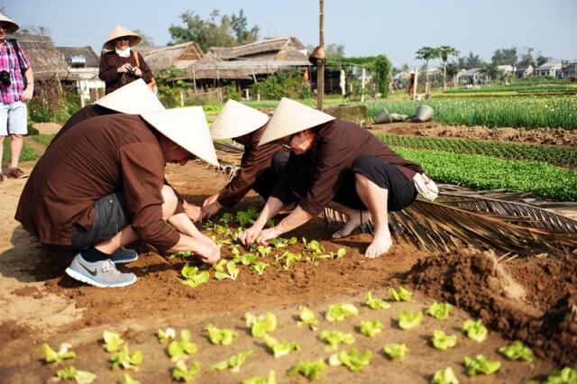 Tra Que Organic Village 7