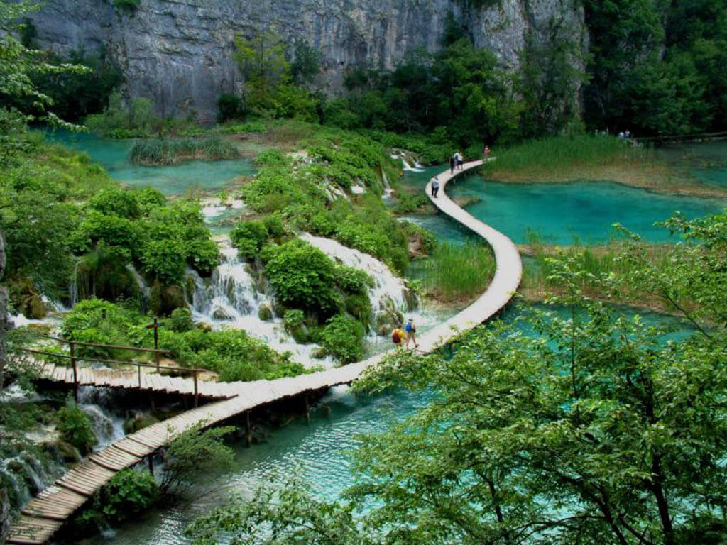 One of Vietnam's national parks, Bach Ma National Park | Vietnam Private Tours