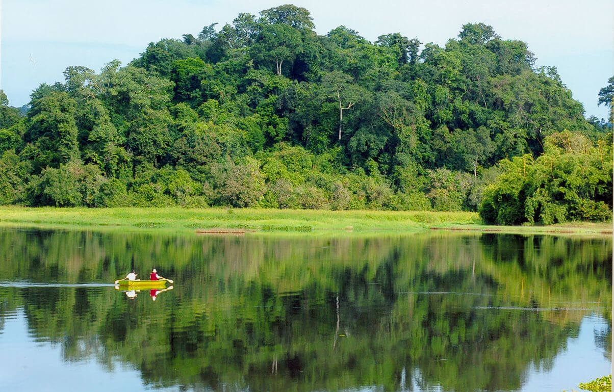 top 10 best vietnam national parks for wildlife discovery